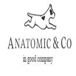 Anatomic Shoes